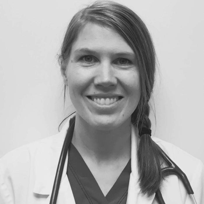 Dr. Sarah Korf</br> Associate Veterinarian photo